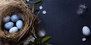 Pascua feliz; Los huevos de Pascua en jerarquía y primavera florecen en la tabla foto de archivo libre de regalías