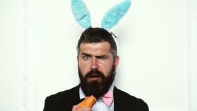 Pascua feliz y d?a divertido de pascua El hombre del conejo de conejito come la zanahoria aislada en el fondo blanco Conejito lin metrajes