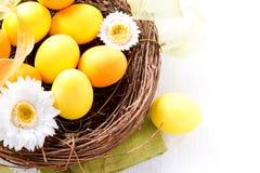 Huevos de Pascua y flores de la primavera Imagen de archivo libre de regalías