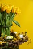 Pascua - tulipán Foto de archivo