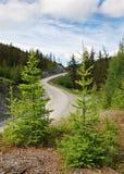 Pase, camino de la montaña, Altai, Rusia Imágenes de archivo libres de regalías