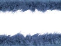 Pasek odizolowywający nad białym tłem futerko zdjęcie royalty free
