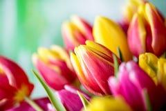 Pasen-achtergrond met kleurrijke eieren en gele tulpen over hout stock foto's