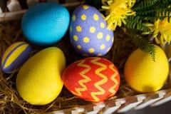 Pasen-achtergrond met kleurrijke eieren, wit konijntje en gele bloemen over oud hout Royalty-vrije Stock Foto's