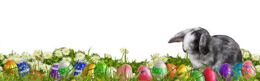 Pasen-achtergrond met paaseieren en Paashaas Royalty-vrije Stock Afbeelding