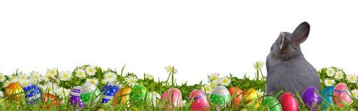 Pasen-achtergrond met paaseieren en Paashaas Stock Afbeelding