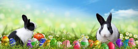Pasen-achtergrond met paaseieren en Paashazen Stock Afbeeldingen