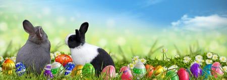 Pasen-achtergrond met paaseieren en Paashazen Stock Afbeelding