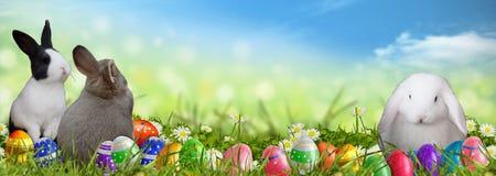 Pasen-achtergrond met paaseieren en Paashazen Stock Foto