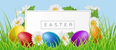 Pasen-bannerkader met eieren en madeliefje in gras stock illustratie