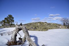 Pasen in Berg Royalty-vrije Stock Fotografie