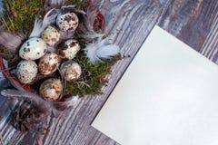 Pasen-brief met kwartelseieren, gnezom, mos, veren, denneappels en takjes van wilg op houten achtergrond wordt verfraaid die Royalty-vrije Stock Foto's