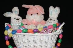 Pasen Bunny Trio Stock Fotografie