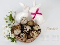 Pasen bunnys en paaseieren op witte achtergrond Stock Fotografie