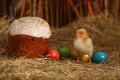 Pasen-cake met gekleurde eieren en kip Royalty-vrije Stock Afbeeldingen