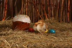 Pasen-cake met gekleurde eieren en kippen Royalty-vrije Stock Fotografie