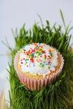 Pasen-cake met vakantiedecoratie en gras Royalty-vrije Stock Foto's