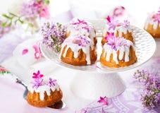 Pasen-Cakes Stock Afbeeldingen