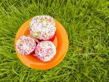 Pasen-cakestribune in een oranje plaat op het groene gras Stock Foto's
