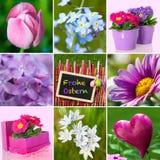 Pasen-collage stock afbeeldingen