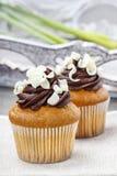 Pasen cupcakes Royalty-vrije Stock Foto's