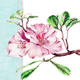 Pasen-de lentebloemen op blauwe achtergrond royalty-vrije stock afbeeldingen