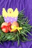 Pasen-decoratie: gele eieren en hand - de gemaakte uitgebroede kip in eierschaal in groene grastakjes nestelt op purpere achtergr stock foto