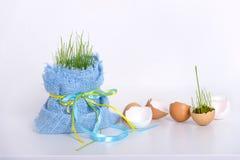 Pasen-decoratie met eierenshell en jong gras Royalty-vrije Stock Afbeelding