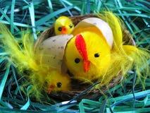 Pasen-decoratie met kip en eieren Royalty-vrije Stock Afbeeldingen
