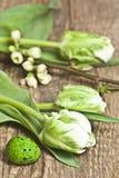 Pasen, eieren, witte tulpen, eieren, witte kleine bloemen op een takjeboom, guail eieren Stock Foto