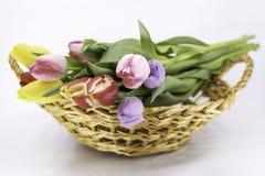Pasen en de Lente, boekettulp stock afbeeldingen