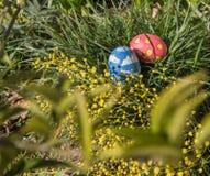 Pasen gekleurde eieren op het gras Royalty-vrije Stock Foto's