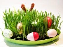 Pasen-gelukwenskaart stock foto's