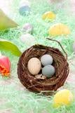Pasen Geschilderde eierensamenstelling Stock Afbeelding