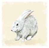 Pasen-groetkaart met konijntje.  Waterverfstijl. Stock Foto's