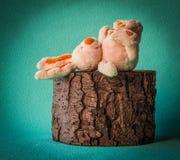 Pasen-het konijn ligt omhoog op de tevreden benen van de boomstomp Stock Foto