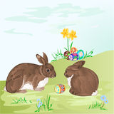Pasen-konijnen en paaseierenvector Stock Foto