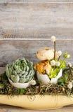 Pasen-lijstdecoratie met succulents en ranunculus bloem royalty-vrije stock afbeelding