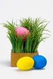 Pasen met eieren Royalty-vrije Stock Fotografie