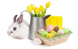 Pasen met kleurrijke eieren, geel tulpen en konijn Stock Foto's