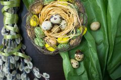 Pasen-nest, vakantiedecoratie, bloemen, kant en banden, pussy stock foto