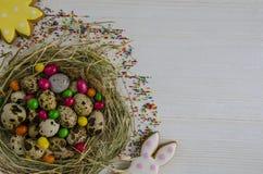 Pasen Paashaas en koekjes in de vorm van de zon Royalty-vrije Stock Foto