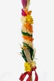 Pasen-palm stock afbeeldingen