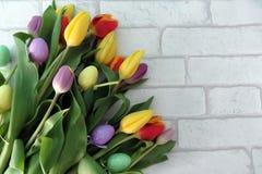 Pasen-Tulpen royalty-vrije stock afbeeldingen