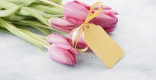 Pasen-Tulpen Stock Foto's