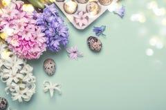 Pasen-Vakantie Blauwe achtergrond Kwartelseieren en hyacintbloemen royalty-vrije stock afbeeldingen