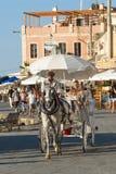 Paseo Chania del carro del caballo Imágenes de archivo libres de regalías