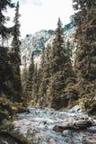 Paseo con el alto Tatras Imagenes de archivo