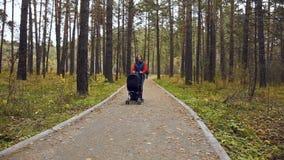 Paseo con el niño en otoño almacen de metraje de vídeo