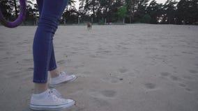 Paseo con el perro en la playa